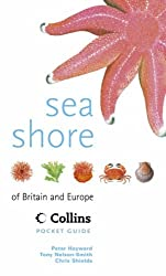 Collins Pocket Guide - Sea Shore of Britain and Europe