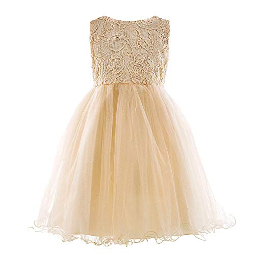 HotDresses Lace Tulle Flower Girl Dress Vintage Wedding Party Dress for Kids Sleeves Pageant Dress with Big Bow (Champagne, 3-4Y)]()