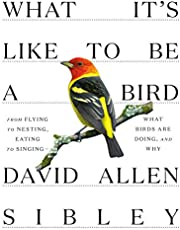 What It's Like to Be a Bird: What Birds Are Doing, and Why--from Flying to Nesting, Eating to Singing