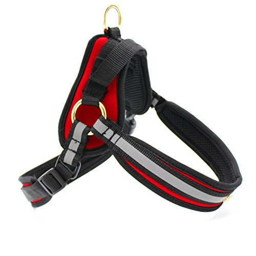 ActivPaws No Pull Dog Harness - Premium Adjustable Harness for Small, Medium & Large Breed Dogs - Reflective. Padded. Light Weight & Comfortable. Durable Heavy Duty. Also works as Pet - Olive Holt