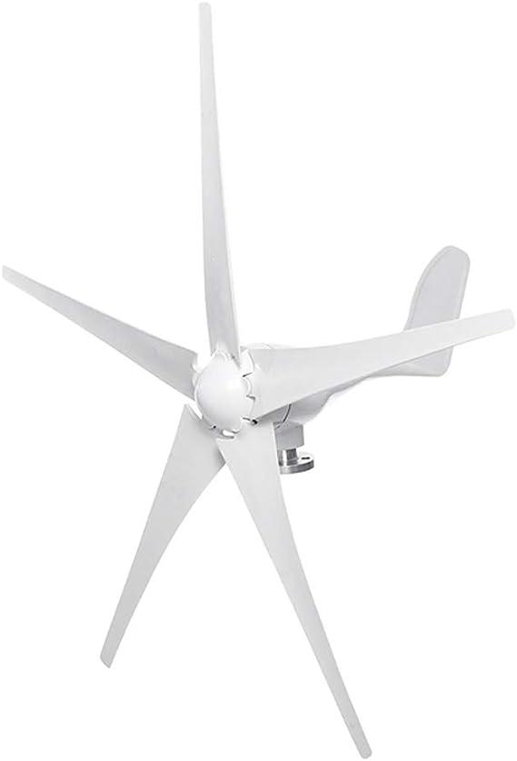 LQQ 600W 12/24 / 48V Energía Eólica Opción Generador De Turbinas De Viento 5 Hojas con Impermeable Controlador De Carga Ajuste for El País O Acampar (Voltage : 48V): Amazon.es: Hogar