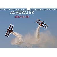 Acrobates dans le ciel : Les Breitling wingwalkers (marcheuses sur les ailes) en évolution. Calendrier mural A4 horizontal