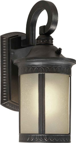 Forte Lighting 17021-01-64  Exterior Wall Light with Umber Seeded Glass Shades, Bordeaux -