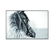 "Live Art Decor - Friesian Horse Art,Black Floater Frame Wild Animal Canvas Print,Contemporary Home Wall Decor Artwork,Stallion Horse Pictures Giclee Print-24""x 36"""