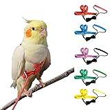 VANFAVORI Adjustable Bird Harness Leash Kit,Outdoor