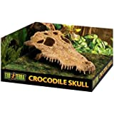 EXO-TERRA ExoTerra Terrarium Decor Croc Skull_LQ