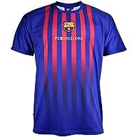 Camiseta Fan 2019 del FC. Barcelona - Producto Oficial Licenciado - Adulto Talla L -