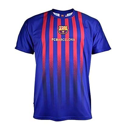 Camiseta Fan 2019 del FC. Barcelona - Producto Oficial Licenciado ...