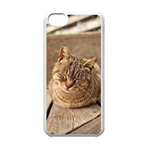 MMZ DIY PHONE CASEBeautiful Cute Cat Unique Design Cover Case with Hard Shell Protection for ipod touch 5 Case lxa862940