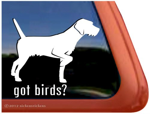 Got Birds? ~ Pudelpointer Dog Vinyl Window Decal