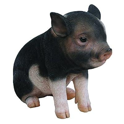 """Hi-Line Gift Ltd Dark Brown Sitting Baby Pig, 6"""": Home & Kitchen"""