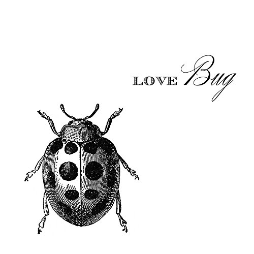 Paperproducts Design Lunch Napkin with Exquisite love Bug Design, 6.5 x 6.5'', Multicolor by Paperproducts Design