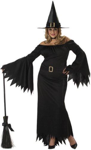 Elegant Witch Adult Plus Costumes (Elegant Witch Adult Costume - Plus Size 2X/3X)