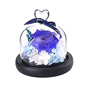 VORCOOL Artificial Rose Flower in Clear Glass Dome for Home Wedding Decor Valentine Birthday (Blue) 47