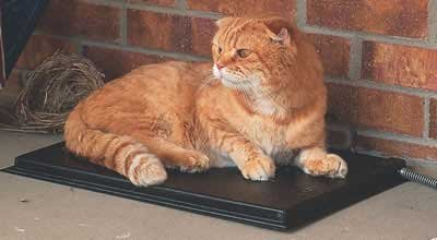 K&H Manufacturing KH3093 K&H Manufacturing Outdoor Heated Kitty Pad - 12.5 X 18.5 by K&H Pet Products