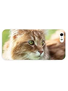 3d Full Wrap Case for iPhone 5/5s Animal Attentive Cat With Green Eyes