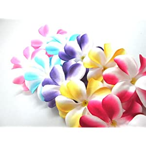 "(100) Assorted Hawaiian Plumeria Frangipani Silk Flower Heads - 3"" - Artificial Flowers Head Fabric Floral Supplies Wholesale Lot for Wedding Flowers Accessories Make Bridal Hair Clips Headbands Dress 24"