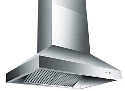 Z Line 697-48-LED Wall Mount Stainless Steel Range Hood, 48-Inch