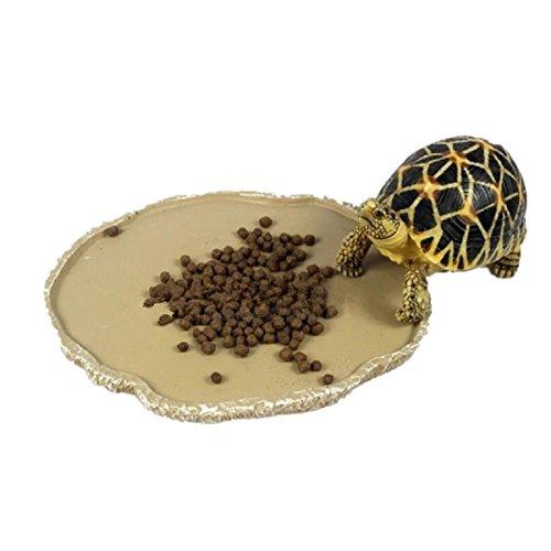 (UEETEK Pets Feeding Plate Reptile Feeding Bowl Vivarium Food Water Dish Resin Bowl for Turtle Gecko Snake Pet Breeding Tray)
