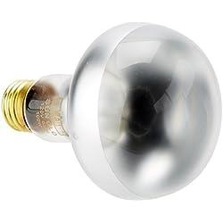 Exo Terra Sun-Glo Basking Infrared Spot Lamp, 100-Watt/120-Volt