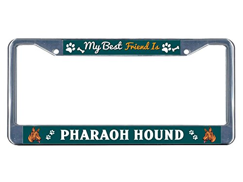 Metal License Plate Frame Solid Insert Pharaoh Hound Dog My Best Friend Car Auto Tag Holder - Chrome 2 Holes, One Frame