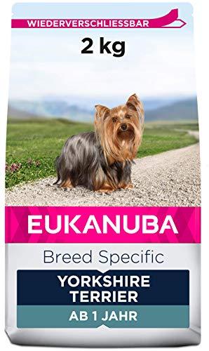 Eukanuba Breed Specific Yorkshire Terrier Trockenfutter – optimal auf die Rasse abgestimmtes Premium Hundefutter mit…