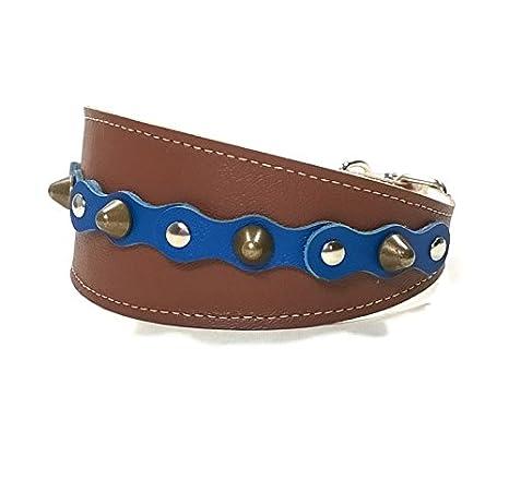 Superpipapo Original Collar de Cuero Marrón Azul para Galgos con ...