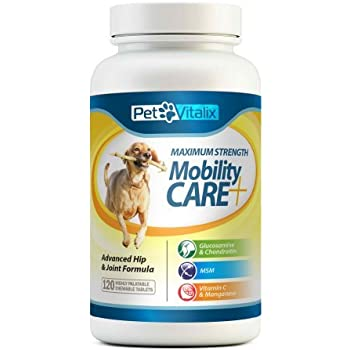 Amazon.com : Glucosamine for Dogs with Chondroitin + MSM