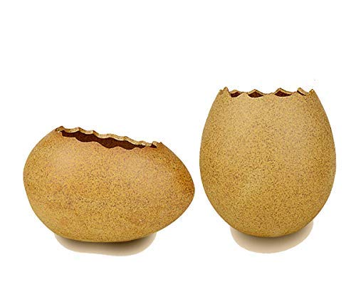 - Ceramic Planters, Succulent Planters Cactus Flower Plant Pot/Container Mini Succulent Plant Pots with Cute Eggs Design – Set of 2