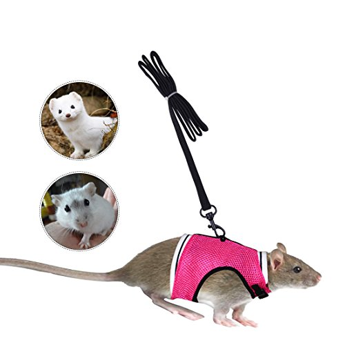 PerSuper-Soft Mesh Small Pet Harness Leash with Safe Bell, No Pull Comfort Padded Vest Durable Nylon Harness Adjustable All Season for Baby Rats,Guinea Pig (S, Pink)