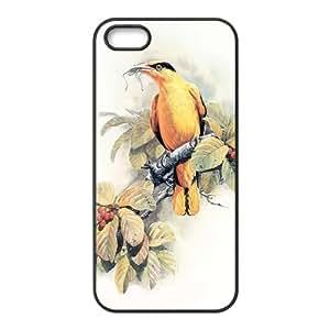 Custom Unique Colorful Cartoon Bird Design Rubber TPU Case Cover For Iphone 5 5S