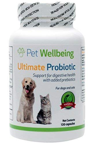 Pet Wellbeing – Ultimate Probiotic with Prebiotics for Cats and Dogs – 120 Caps