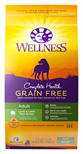 Wellness Complete Natural Food 24 Pound product image