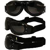 Birdz Eyewear Eagle Motorcycle Goggles (Black Frame/Smoke Lens)