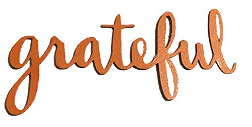 Roeda Brighten Your Life 13748O Grateful Word Magnet in Orange Made in USA ()