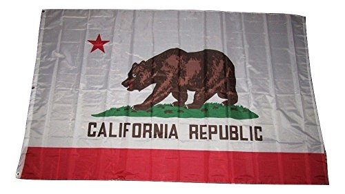 - ALBATROS 5inx8in State of California Flag 5x8 Foot Flag Banner Large for Home and Parades, Official Party, All Weather Indoors Outdoors