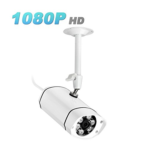 Security Surveillance IP Camera 1080P HD Bullet Micro SD Slot (Max 32GB, Not Included) Support ONVIF Web RTSP Stream IE Email Alarm Playback Motion Detection Outdoor Indoor IR Night Vision Ipccam