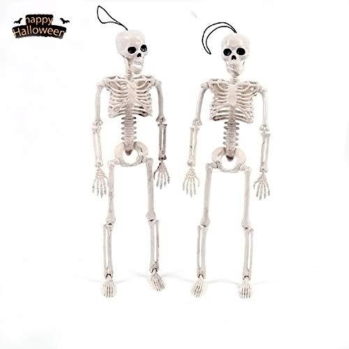 OKlife 16 inches Model Or Halloween Skeleton Toys Decoration - Poseable Skeleton Full Body Halloween Skeleton with Movable Joints (Skeleton) -