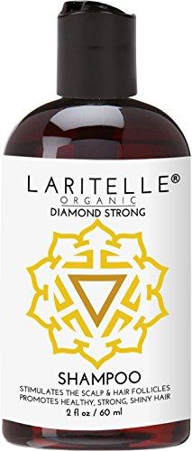 Laritelle Organic Travel Size Shampoo 2 oz | Hair Loss Prevention, Strengthening, Follicle Stimulating | Argan, Rosemary, Lemongrass, Ginger & Cedarwood | NO GMO, Sulfate, Alcohol, Paraben, Phthalate