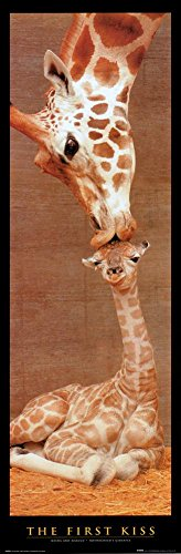 First Kiss Giraffe with Baby Art Poster Print - 12x36 Poster Print, 12x36