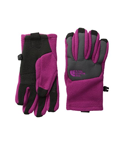 The North Face Kids Unisex Denali Etip Gloves (Big Kids) Roxbury Pink LG (12-14 Big Kids) (Roxbury Accessories)