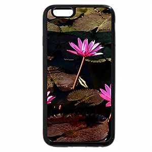 iPhone 6S Plus Case, iPhone 6 Plus Case, Loveliness