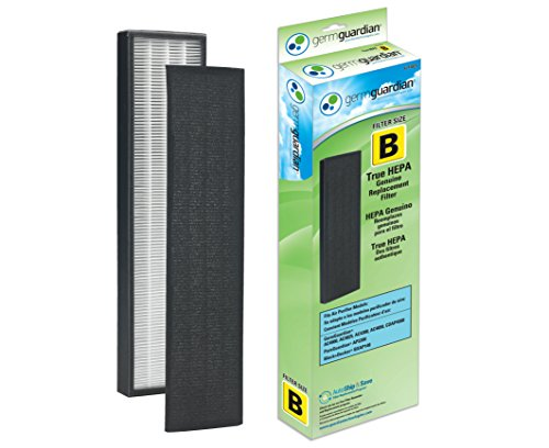 Cleaner Air Hepa Filter Replacement (GermGuardian Air Purifier Filter FLT4825 GENUINE True HEPA Replacement Filter B for AC4300/AC4800/4900 Series Germ Guardian Air Purifiers)