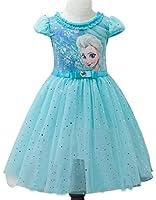 Eyekepper Kids Children Girls Cartoon Elsa Princess Cosplay Mesh Bubble Dress
