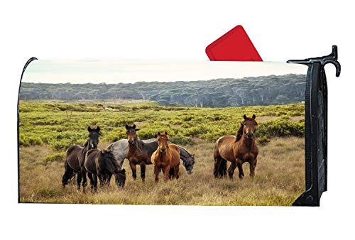 Spring Mountian and Horses Animal Theme Magnetic Mailbox Cover, Mailbox Wrap Home Decorative for Standard Size Postbox ()
