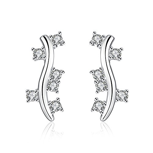 [Earrings for Girls Valentine's Day Sterling Silver Fashion Jewelry Zirconia Women] (Funky Punk Bones Adult Costumes)