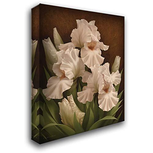 Iris Illumination I 44x56 Extra Large Gallery Wrapped Stretched Canvas Art by Levashov, Igor