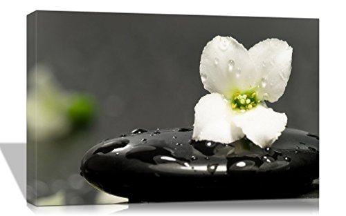 Purple Verbena Art 12''x16'' Stretched and Framed Modern White Flower and Black Stone Spa Design Pictures Photo Prints on Canvas Paintings, HD High Giclle Zen Walls Artwork for Home Decor 12' Black & White Framed