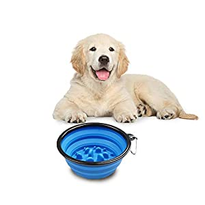 Synthiiz Collapsible Dog Bowl Interactive Pet Slow Feeder with Hook for Outdoor and Travelling Feeding 24