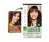 Clairol Natural Instincts Hair Color, Shade 6w/13b